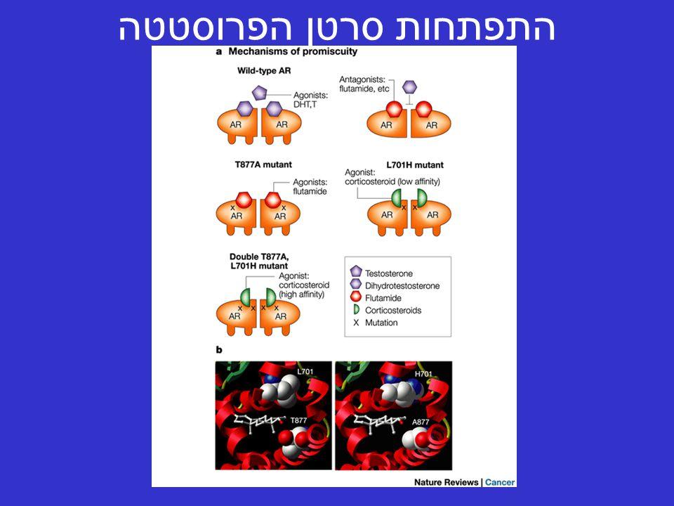 התפתחות סרטן הפרוסטטה