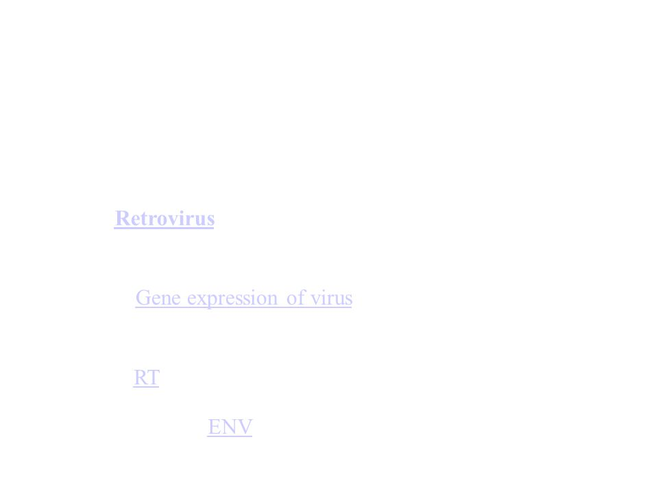Retrovirus Gene expression of virus RT ENV