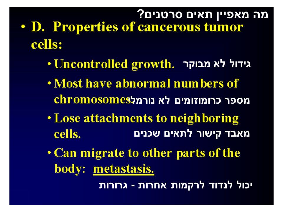מה מאפיין תאים סרטנים.