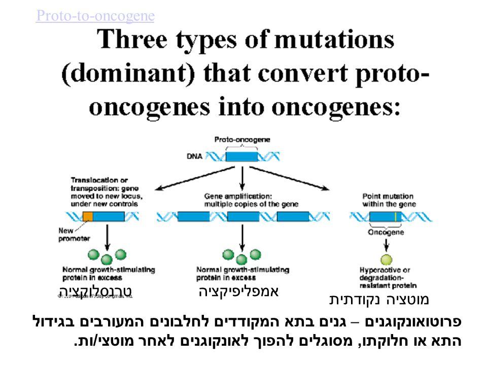 פרוטואונקוגנים – גנים בתא המקודדים לחלבונים המעורבים בגידול התא או חלוקתו, מסוגלים להפוך לאונקוגנים לאחר מוטצי/ות.