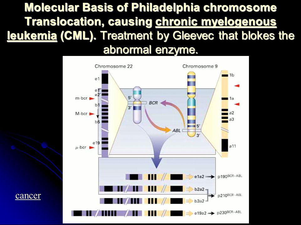 Molecular Basis of Philadelphia chromosome Translocation, causing chronic myelogenous leukemia (CML).
