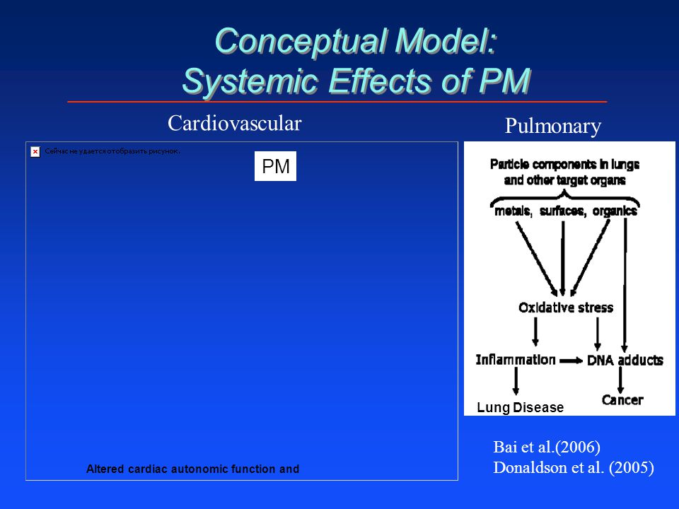 Conceptual Model: Systemic Effects of PM Bai et al.(2006) Donaldson et al. (2005) Altered cardiac autonomic function and PM Cardiovascular Pulmonary L