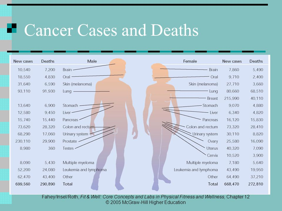 Fahey/Insel/Roth, Fit & Well: Core Concepts and Labs in Physical Fitness and Wellness, Chapter 12 © 2005 McGraw-Hill Higher Education Cancer Cases and Deaths