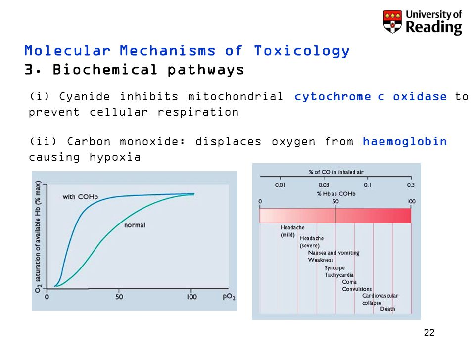 22 Molecular Mechanisms of Toxicology 3. Biochemical pathways (i) Cyanide inhibits mitochondrial cytochrome c oxidase to prevent cellular respiration