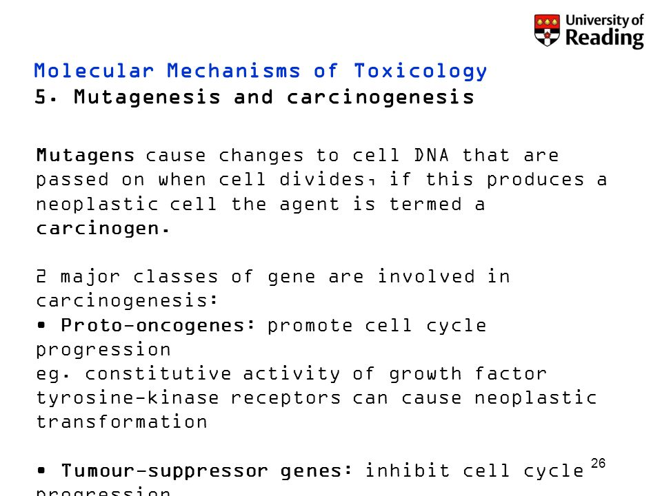 26 Molecular Mechanisms of Toxicology 5. Mutagenesis and carcinogenesis Mutagens cause changes to cell DNA that are passed on when cell divides, if th