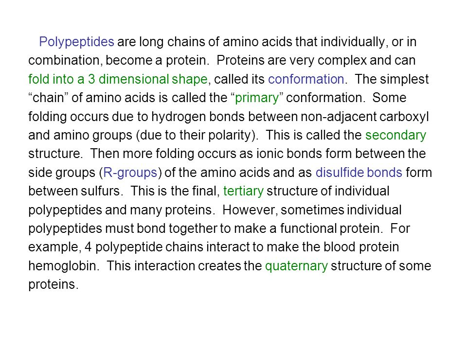 Polypeptides are long chains of amino acids that individually, or in combination, become a protein.