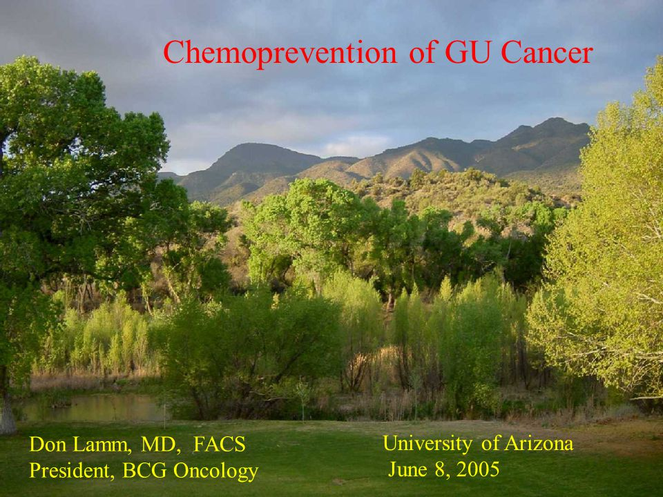 Chemoprevention of GU Cancer Don Lamm, MD, FACS President, BCG Oncology University of Arizona June 8, 2005