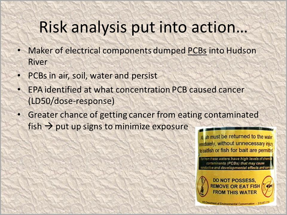 Risk analysis put into action… Maker of electrical components dumped PCBs into Hudson River PCBs in air, soil, water and persist EPA identified at wha