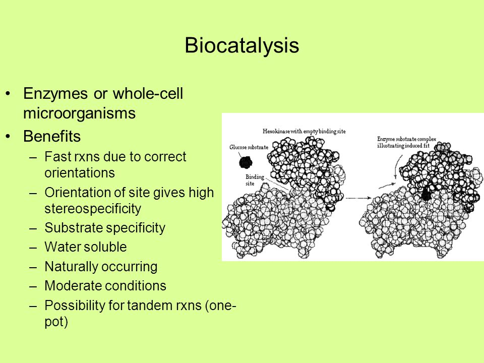 Biocatalysis Enzymes or whole-cell microorganisms Benefits –Fast rxns due to correct orientations –Orientation of site gives high stereospecificity –S