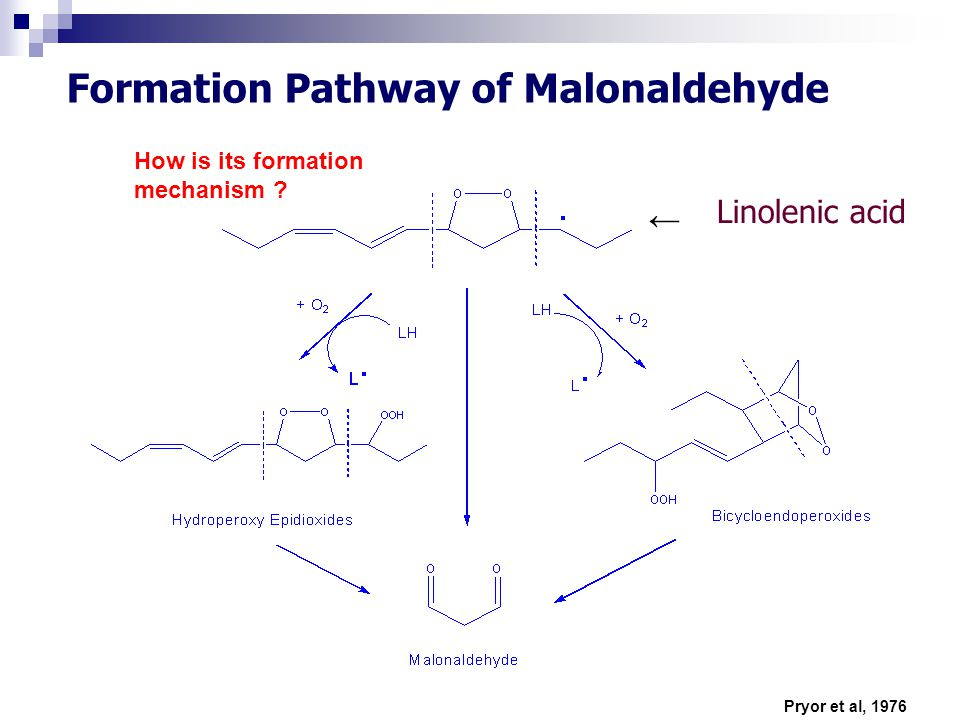 Formation Pathway of Malonaldehyde Pryor et al, 1976 Linolenic acid ← How is its formation mechanism ?