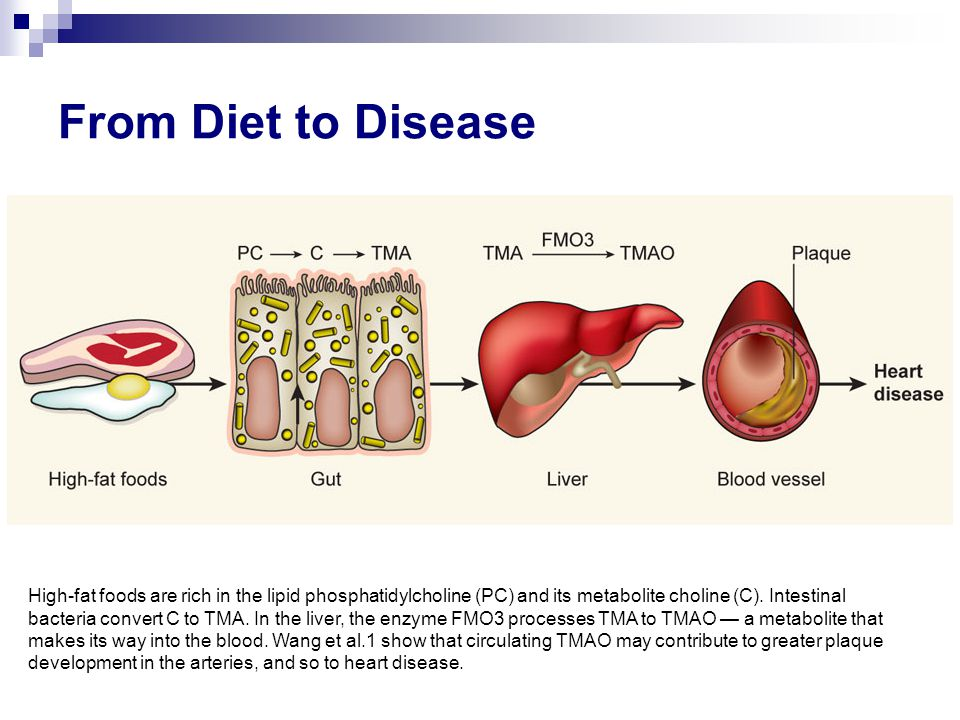 Background –Non-genotoxic carcinogen (JECFA, EU SCF)  threshold –Kidney toxicity at chronic exposure –Inhibits male fertility at high doses Occurrence –Hydrolyzed vegetable proteins (HVP) –Low levels in foods (biscuits, bread, cooked/cured fish and meat) –Migration (food contact materials) Human dietary exposure –2  g/person/day from savory foods –140-1100  g/person/day from soy sauce EU Restriction of 3-MCPD in process flavor is 20 ppb (liquid base) and 50 ppb (dry base) 3-MCPD (3-monochloropropane-1,2-diol)