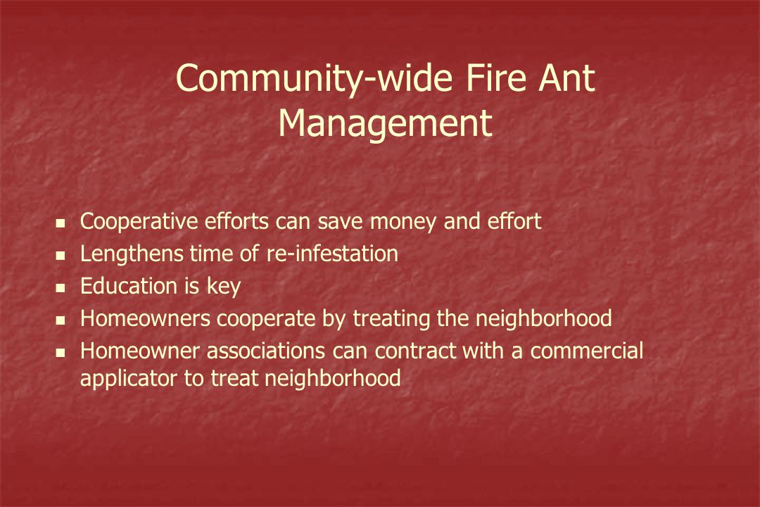 Community-wide Fire Ant Management Cooperative efforts can save money and effort Lengthens time of re-infestation Education is key Homeowners cooperate by treating the neighborhood Homeowner associations can contract with a commercial applicator to treat neighborhood