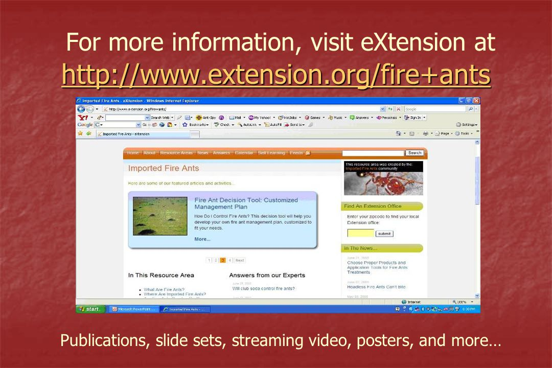 http://www.extension.org/fire+ants http://www.extension.org/fire+ants For more information, visit eXtension at http://www.extension.org/fire+ants http://www.extension.org/fire+ants Publications, slide sets, streaming video, posters, and more…