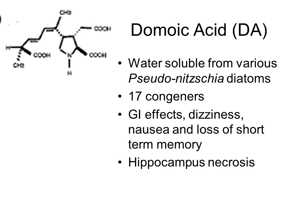 Domoic Acid (DA) Water soluble from various Pseudo-nitzschia diatoms 17 congeners GI effects, dizziness, nausea and loss of short term memory Hippocampus necrosis