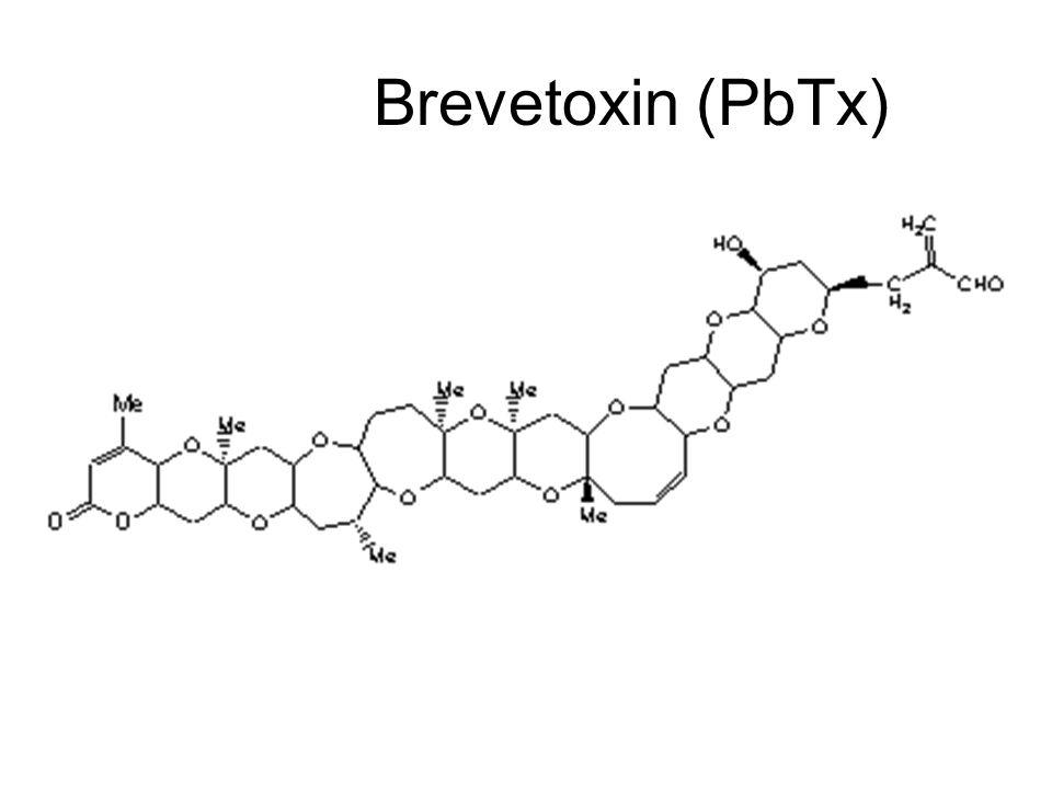 Brevetoxin (PbTx)
