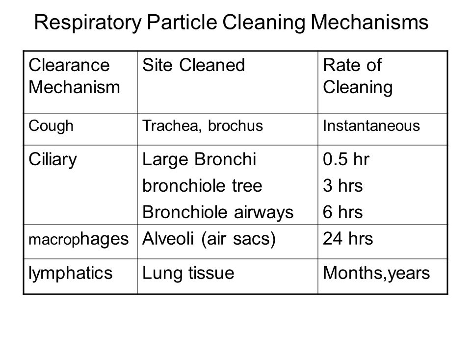 Respiratory Particle Cleaning Mechanisms Clearance Mechanism Site CleanedRate of Cleaning CoughTrachea, brochusInstantaneous CiliaryLarge Bronchi bronchiole tree Bronchiole airways 0.5 hr 3 hrs 6 hrs macrop hagesAlveoli (air sacs)24 hrs lymphaticsLung tissueMonths,years