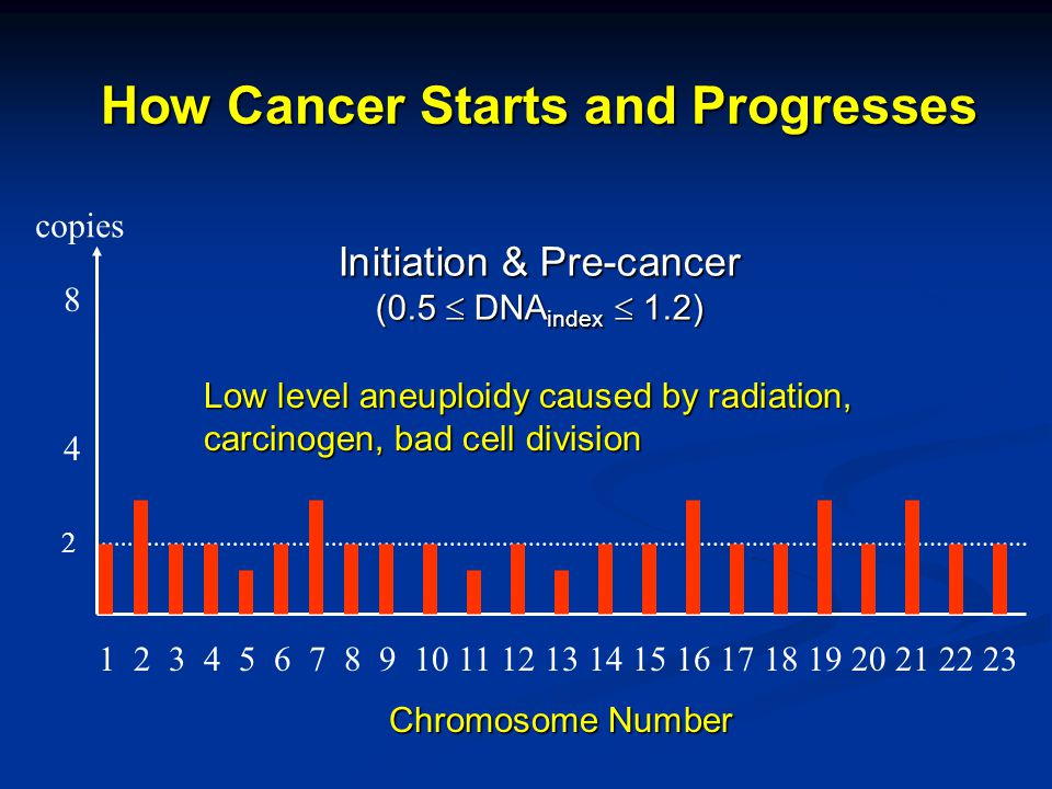 How Cancer Starts and Progresses 1 2 3 4 5 6 7 8 9 10 11 12 13 14 15 16 17 18 19 20 21 22 23 copies Initiation & Pre-cancer (0.5  DNA index  1.2) 2 4 8 Low level aneuploidy caused by radiation, carcinogen, bad cell division Chromosome Number
