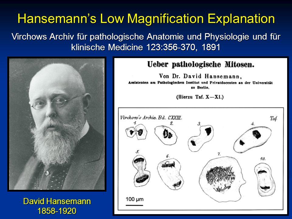 Virchows Archiv für pathologische Anatomie und Physiologie und für klinische Medicine 123:356-370, 1891 Hansemann's Low Magnification Explanation David Hansemann 1858-1920