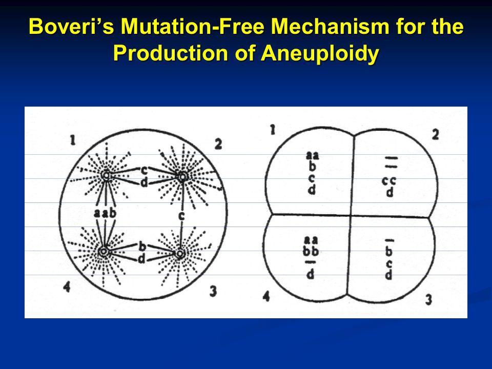 Autocatalyzed Progression of Aneuploidy is Carcinogenesis
