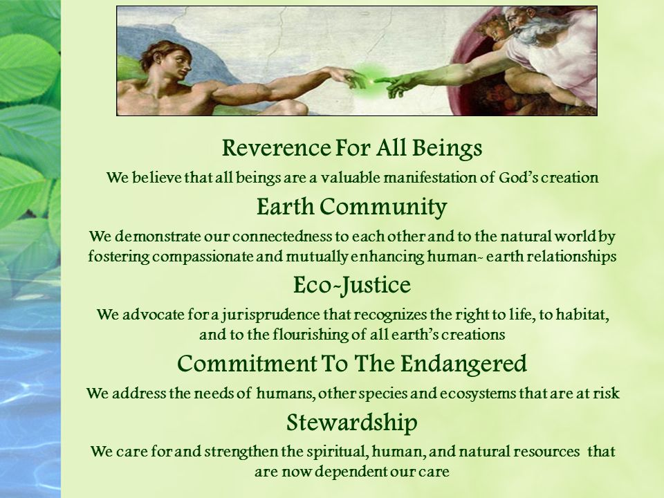 Reverence For All Beings We believe that all beings are a valuable manifestation of God's creation Earth Community We demonstrate our connectedness to each other and to the natural world by fostering compassionate and mutually enhancing human- earth relationships Eco-Justice We advocate for a jurisprudence that recognizes the right to life, to habitat, and to the flourishing of all earth's creations Commitment To The Endangered We address the needs of humans, other species and ecosystems that are at risk Stewardship We care for and strengthen the spiritual, human, and natural resources that are now dependent our care