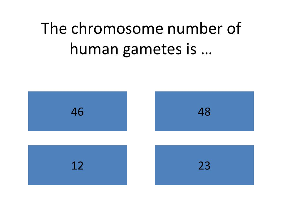 The chromosome number of human gametes is … 4648 1223