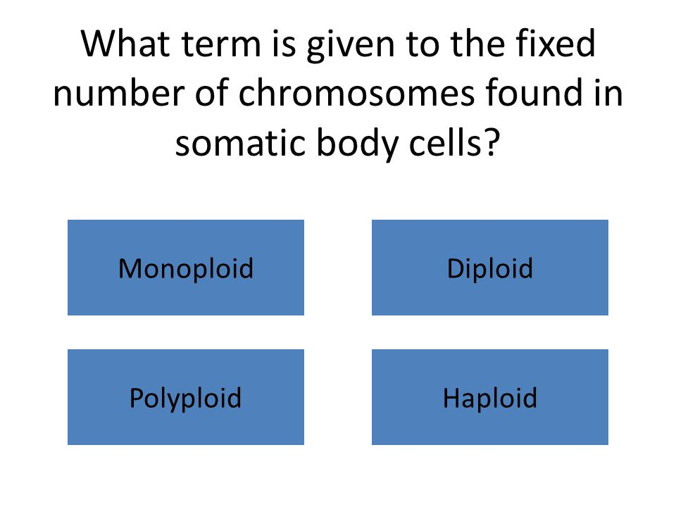 What term is given to the fixed number of chromosomes found in somatic body cells? MonoploidDiploid PolyploidHaploid
