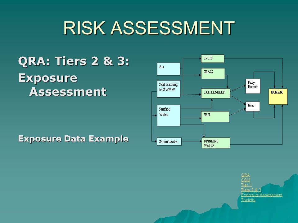 RISK ASSESSMENT QRA: Tiers 2 & 3: Exposure Assessment Exposure Data Example QRA CSM Tier 1 Tiers 2 & 3 Exposure Assessment Toxicity