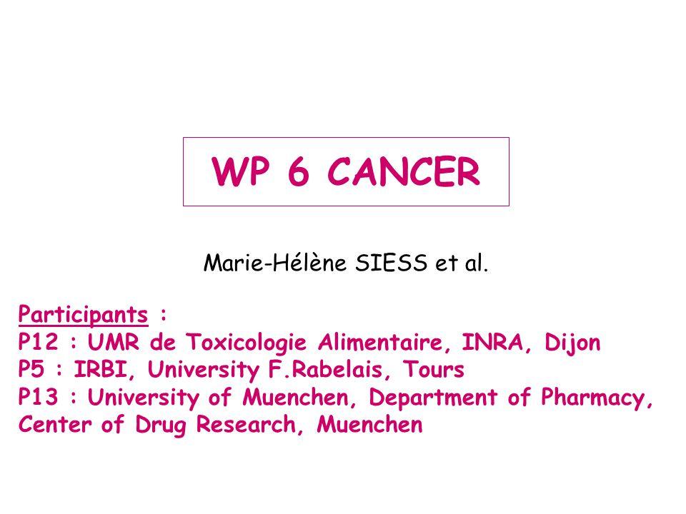 PROTOCOL OF HEPATOCARCINOGENESIS Detection of preneoplastic foci Carcinogen administration Aflatoxin B1 (AFB1) : 10 x 0.025mg/kg Diethylnitrosamine (DEN) : 10 X 2.5 mg/kg Sacrifice 0 1 2 3 4 5 6 7 8 9 weeks Garlic diet PromotionInitiation