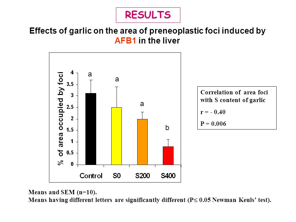 Effects of garlic on the area of preneoplastic foci induced by AFB1 in the liver Means and SEM (n=10). Means having different letters are significantl