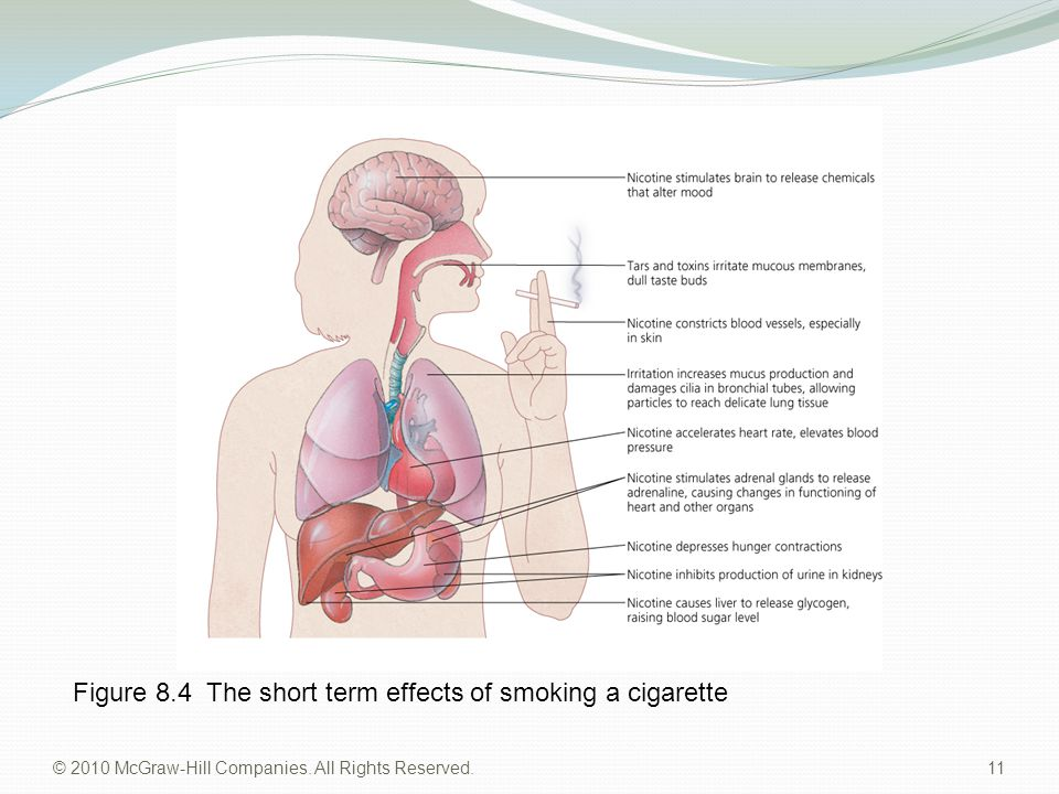 © 2010 McGraw-Hill Companies. All Rights Reserved. 11 Figure 8.4 The short term effects of smoking a cigarette