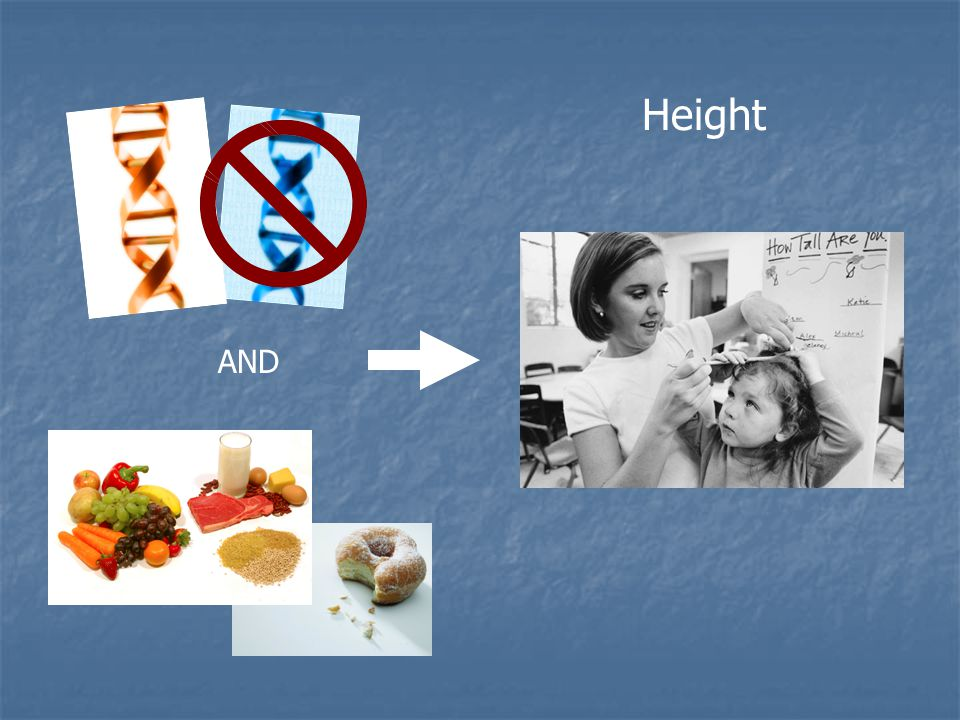 AND Nutrition (environment) Height