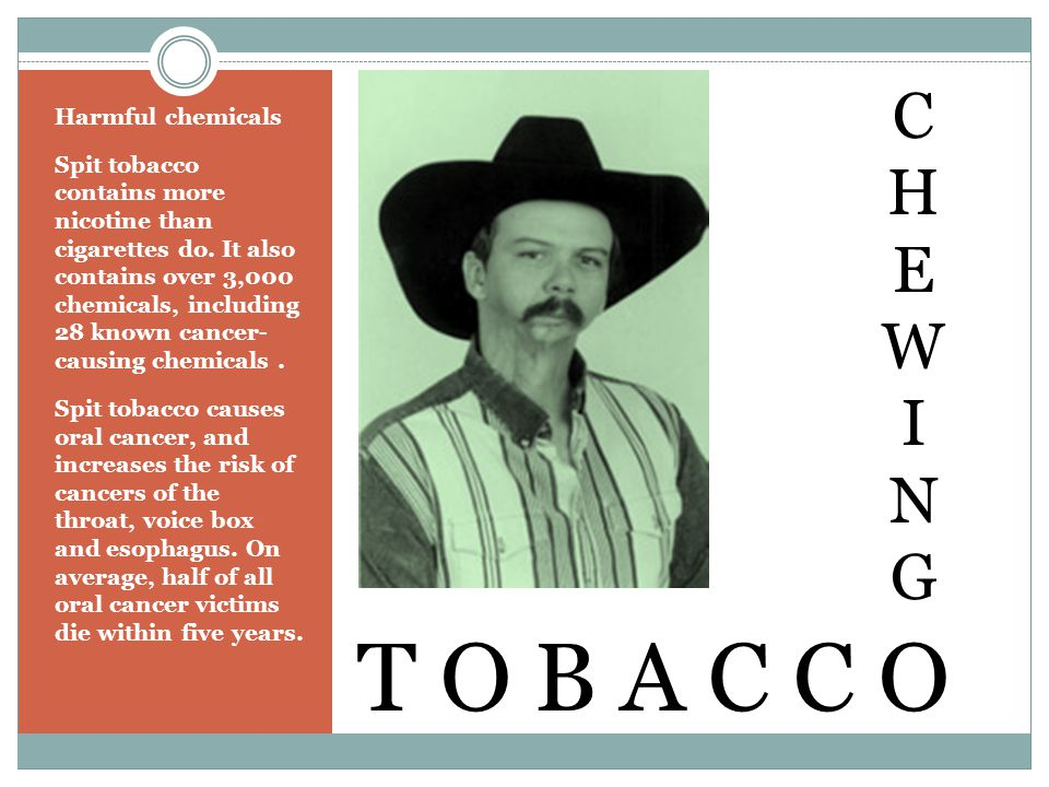 Harmful chemicals Spit tobacco contains more nicotine than cigarettes do.