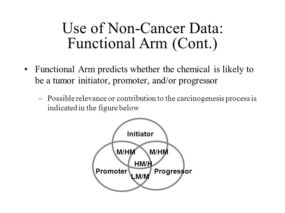 Use of Non-Cancer Data: Functional Arm (Cont.) Functional Arm predicts whether the chemical is likely to be a tumor initiator, promoter, and/or progressor –Possible relevance or contribution to the carcinogenesis process is indicated in the figure below Initiator Promoter Progressor M/HM HM/H LM/M