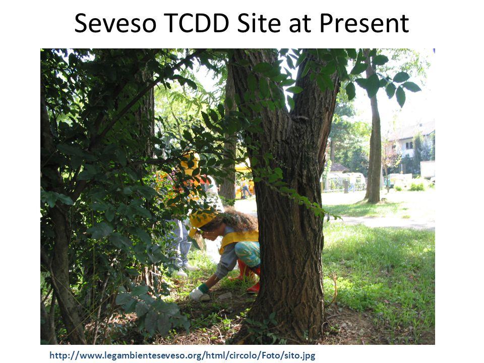 Seveso TCDD Site at Present http://www.legambienteseveso.org/html/circolo/Foto/sito.jpg