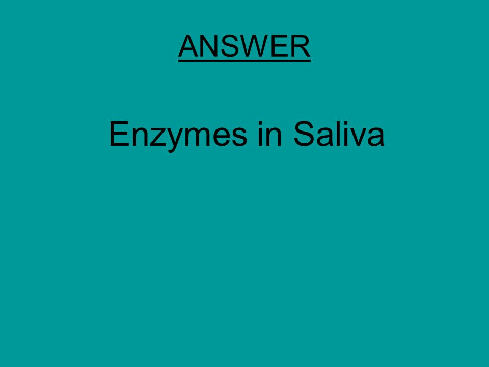 ANSWER Enzymes in Saliva
