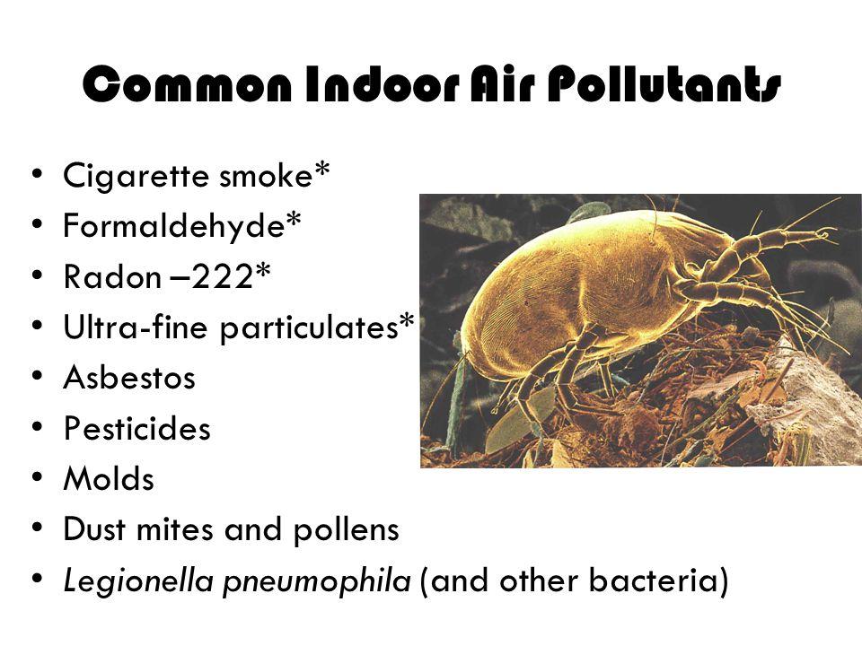 Common Indoor Air Pollutants Cigarette smoke* Formaldehyde* Radon –222* Ultra-fine particulates* Asbestos Pesticides Molds Dust mites and pollens Legi