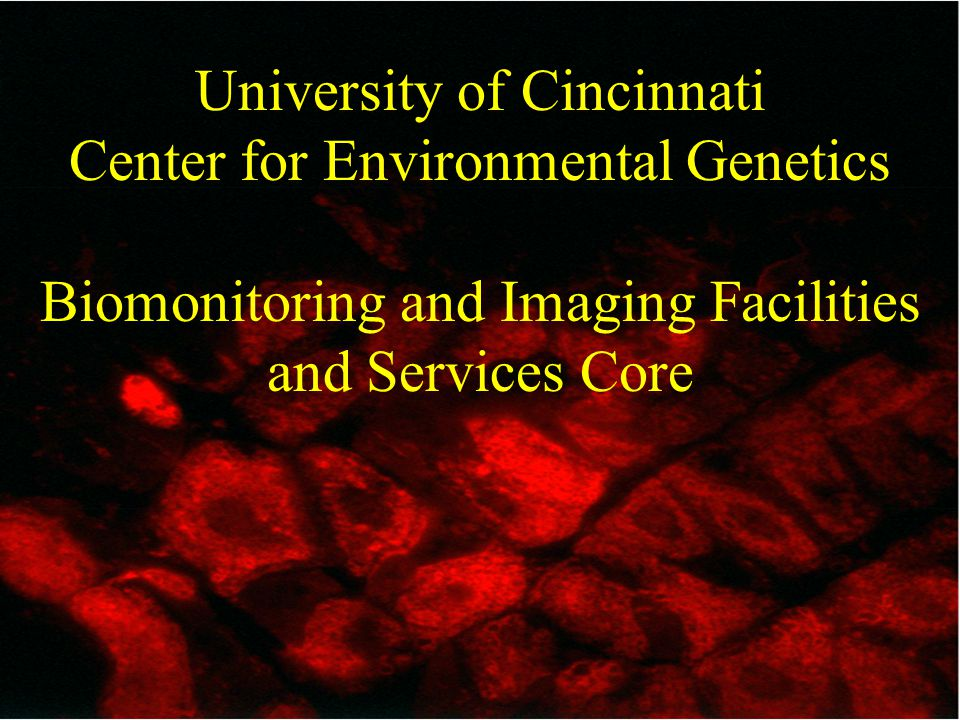 University of Cincinnati Center for Environmental Genetics Biomonitoring and Imaging Facilities and Services Core