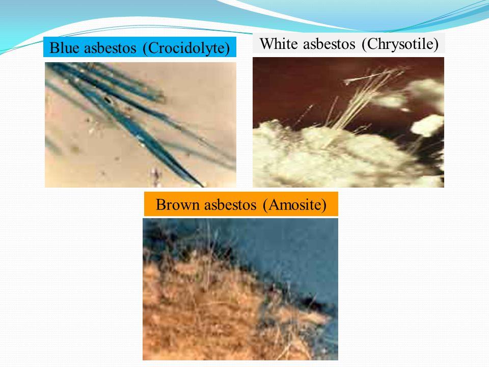 Blue asbestos (Crocidolyte) White asbestos (Chrysotile) Brown asbestos (Amosite)
