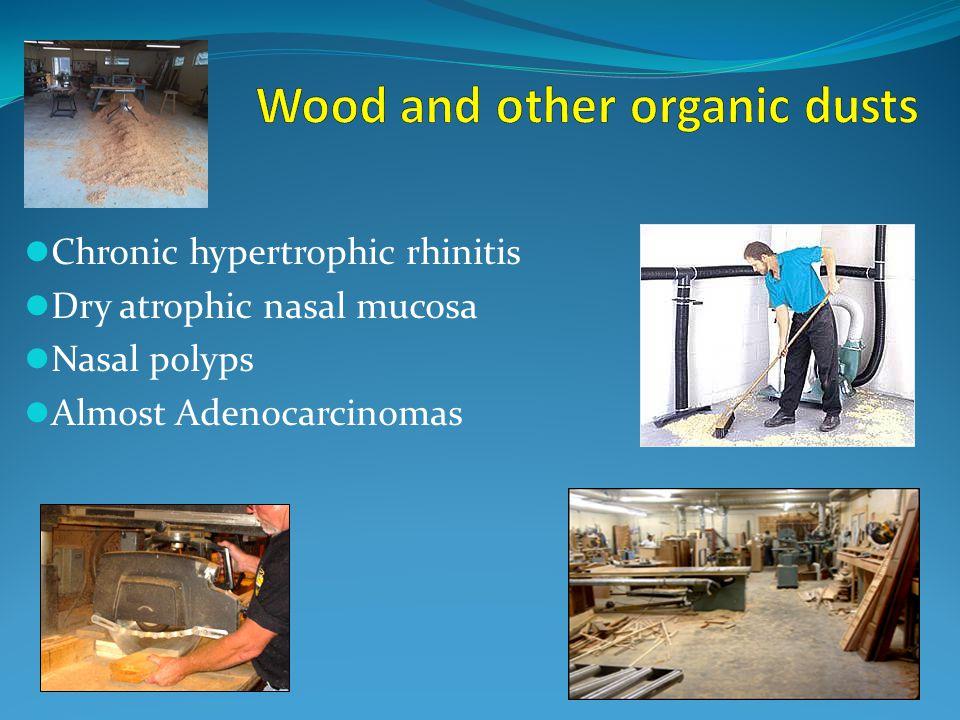 Chronic hypertrophic rhinitis Dry atrophic nasal mucosa Nasal polyps Almost Adenocarcinomas