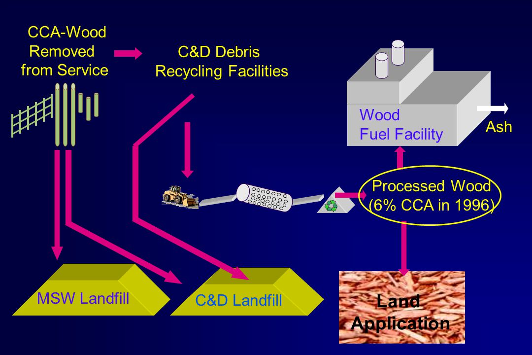 C&D Landfill MSW Landfill C&D Debris Recycling Facilities CCA-Wood Removed from Service Processed Wood (6% CCA in 1996) Land Application Wood Fuel Facility Ash