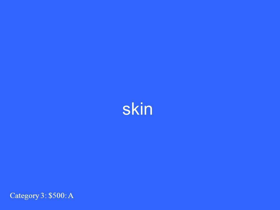 Category 3: $500: A skin
