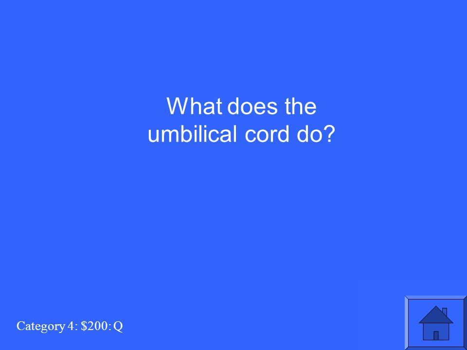 Category 4: $200: Q What does the umbilical cord do