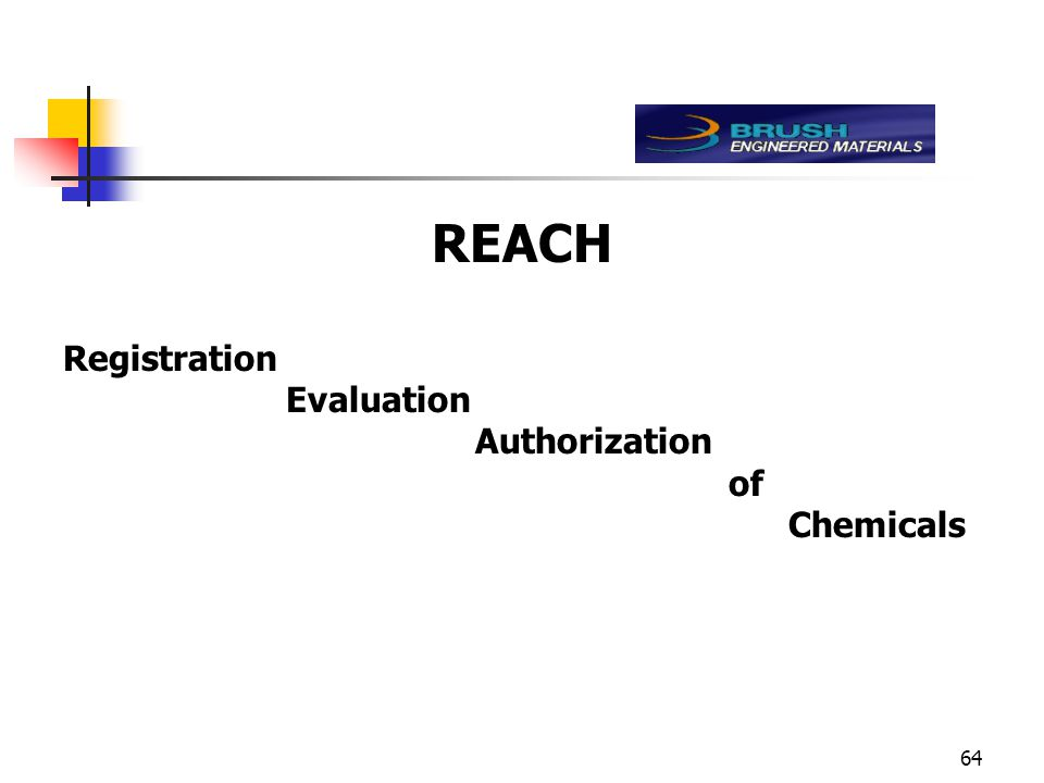 64 REACH Registration Evaluation Authorization of Chemicals