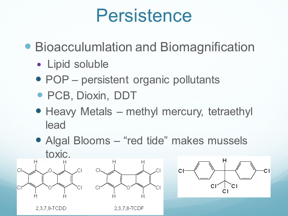 Persistence Bioacculumlation and Biomagnification Lipid soluble POP – persistent organic pollutants PCB, Dioxin, DDT Heavy Metals – methyl mercury, te