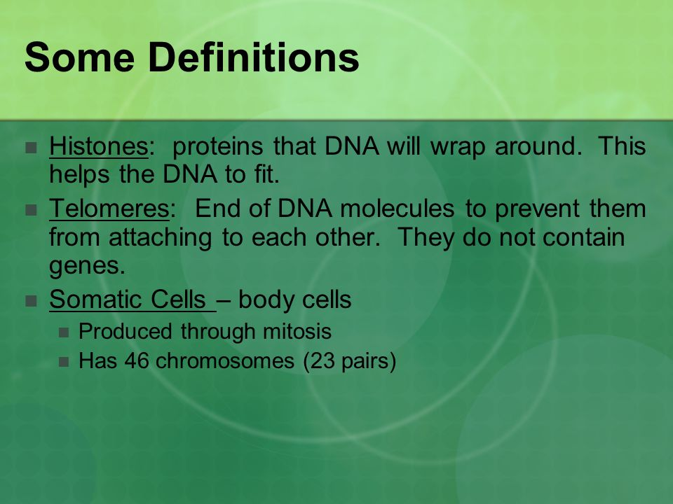 Chromatin - A complex of DNA and proteins in the cell nucleus that condenses to form chromosomes during cell division(loose DNA).