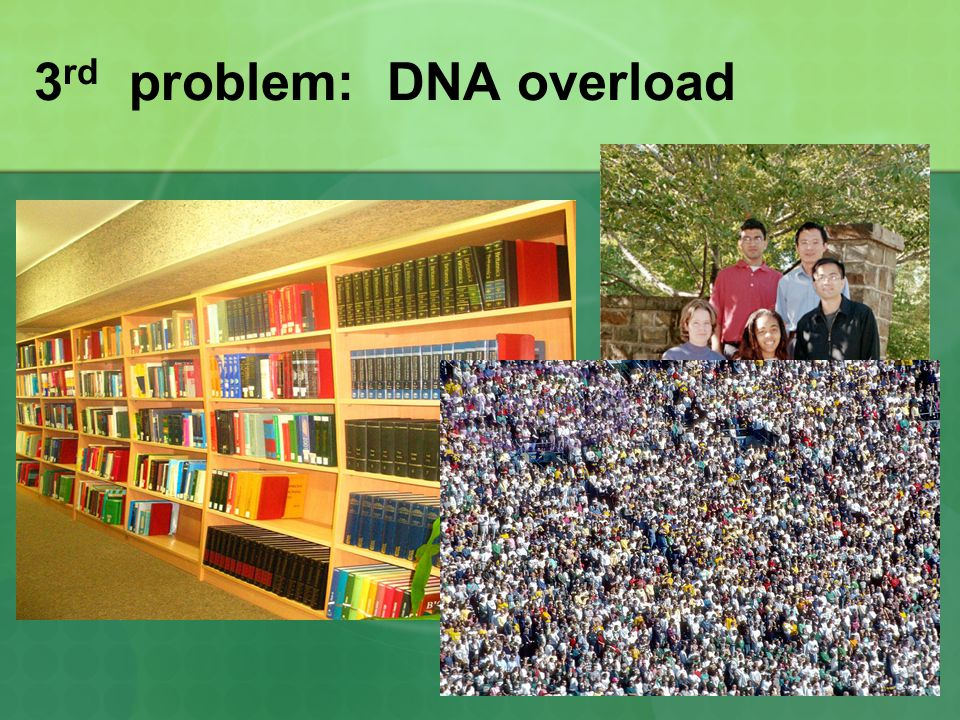 3 rd Problem - Too Big 3.DNA overload Your DNA controls all activities in the cell.