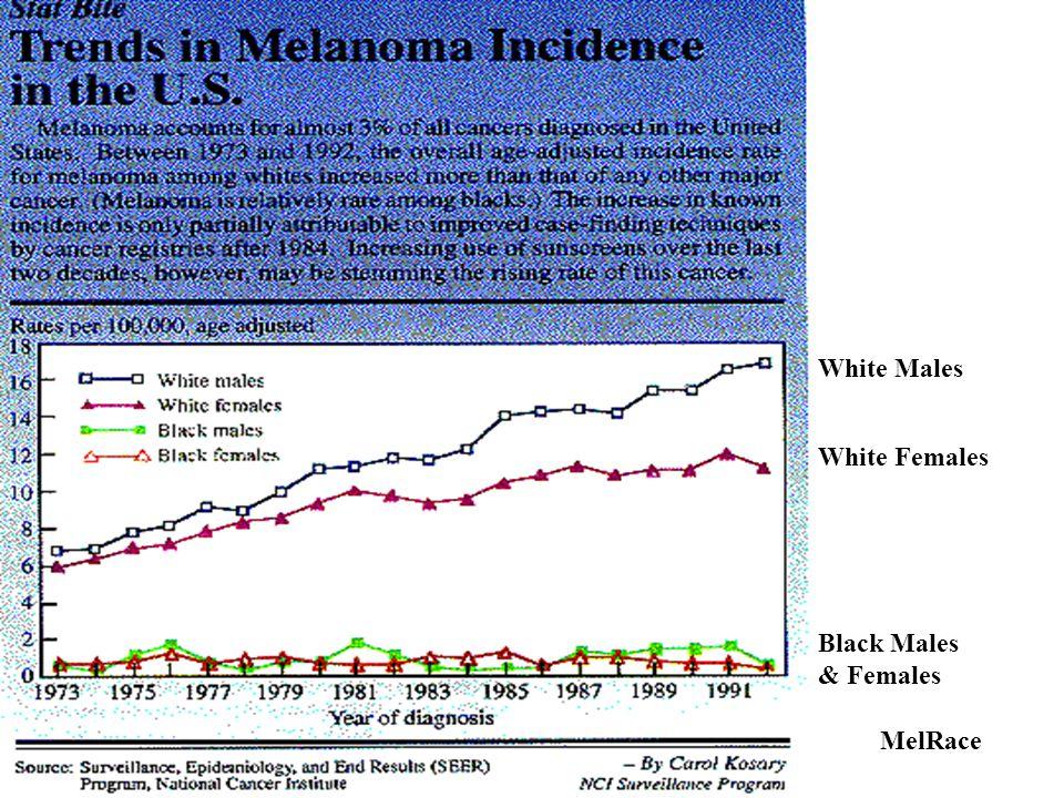 White Males White Females Black Males & Females MelRace