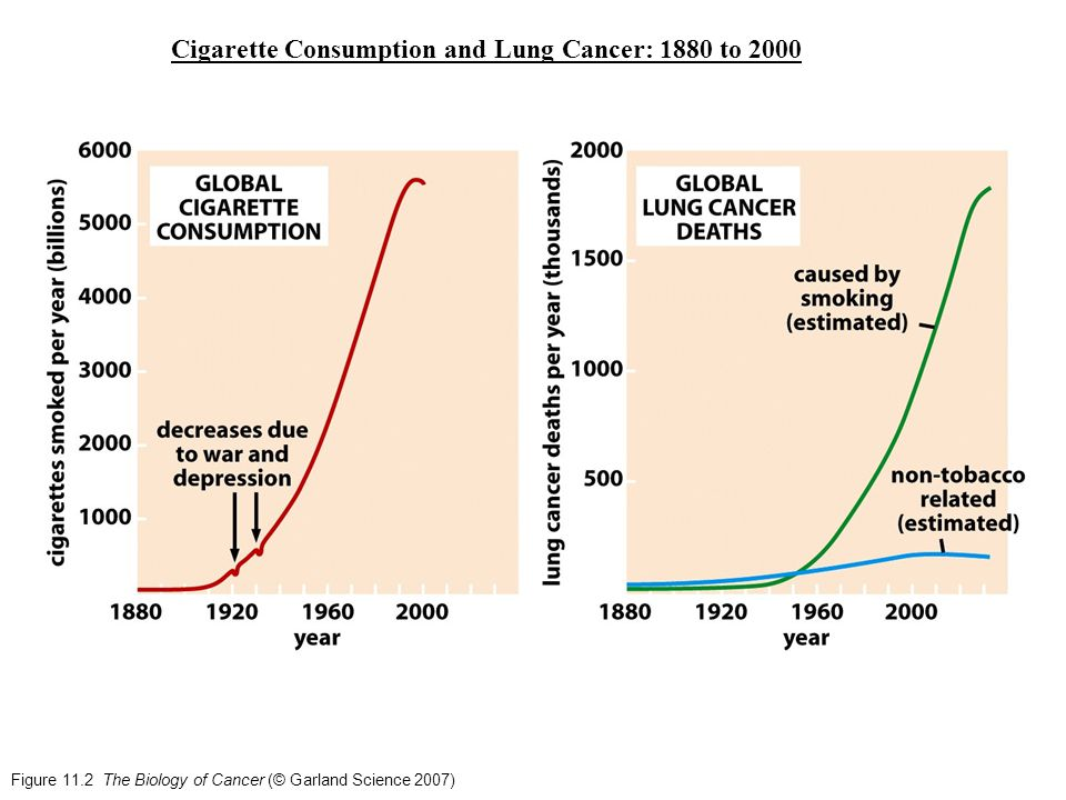 Figure 11.2 The Biology of Cancer (© Garland Science 2007) Cigarette Consumption and Lung Cancer: 1880 to 2000