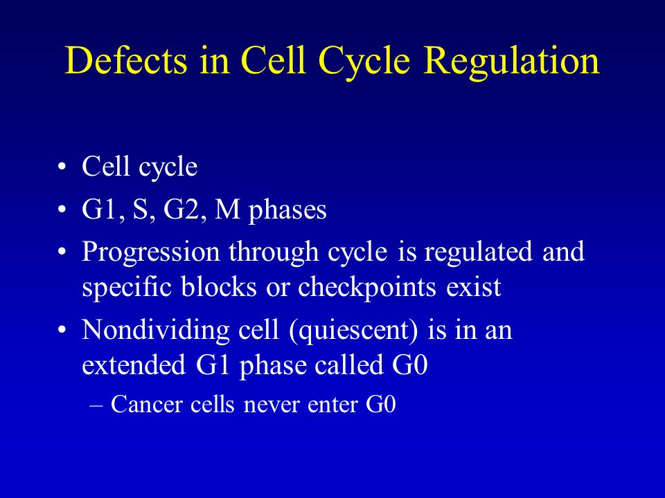 Defects in Cell Cycle Regulation Cell cycle G1, S, G2, M phases Progression through cycle is regulated and specific blocks or checkpoints exist Nondividing cell (quiescent) is in an extended G1 phase called G0 –Cancer cells never enter G0