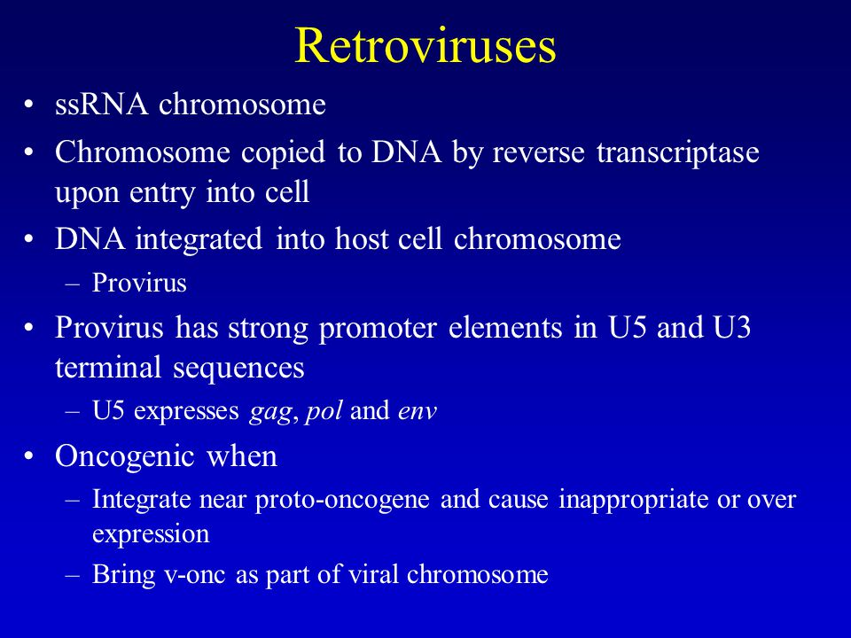 Retroviruses ssRNA chromosome Chromosome copied to DNA by reverse transcriptase upon entry into cell DNA integrated into host cell chromosome –Provirus Provirus has strong promoter elements in U5 and U3 terminal sequences –U5 expresses gag, pol and env Oncogenic when –Integrate near proto-oncogene and cause inappropriate or over expression –Bring v-onc as part of viral chromosome